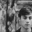 Czechoslovak New Wave Collection DVD Review