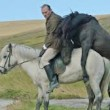 Of Horses and Men DVD Review