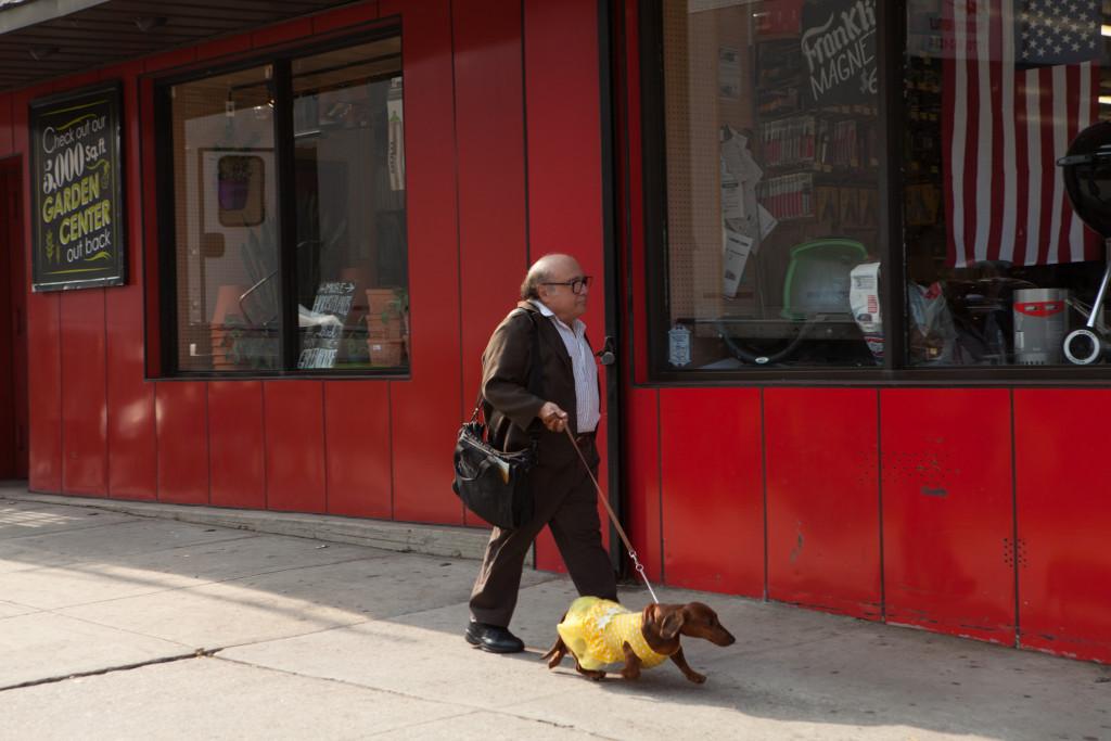 Wiener-Dog Danny DeVito
